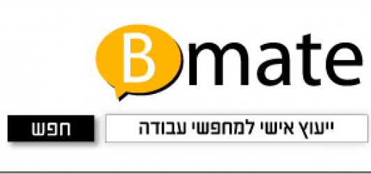 cropped-Bmate_LOGO_Header.png